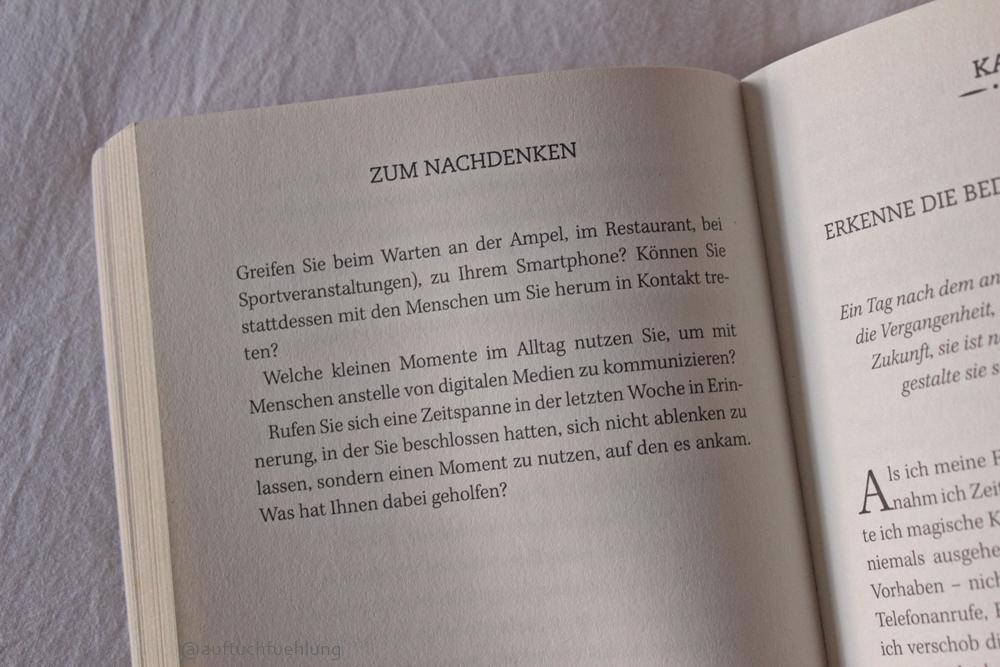 Buch_entschleunigung_1
