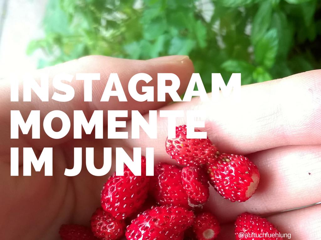Unsere Junimomente in Instagram Bildern {2015}