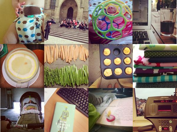 Unsere Maimomente in Instagram Bildern